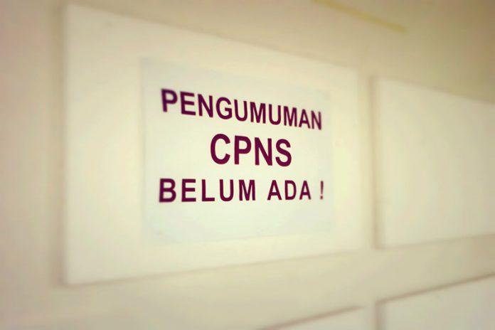 Pengumuman Tes CPNS