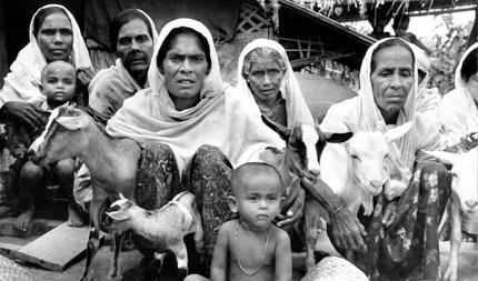 OHCHR: Militer Myanmar Terlibat Pembantaian Muslim Rohingya
