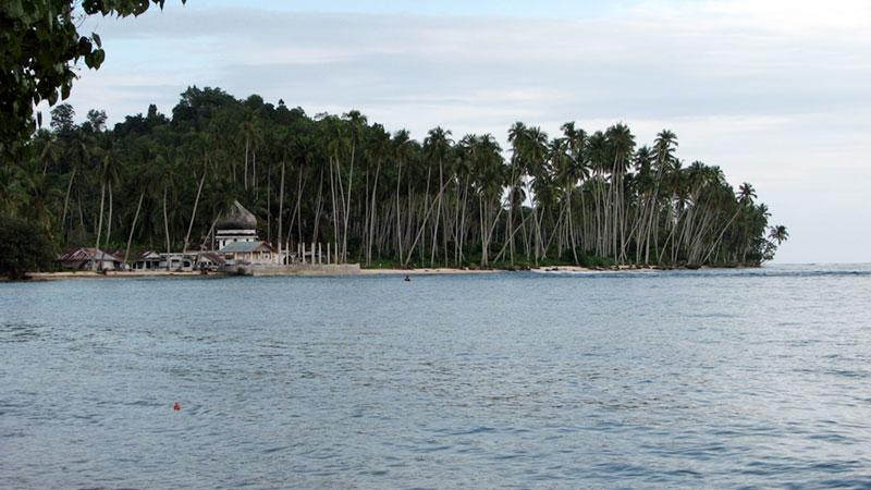 Pantai Barat dan Selatan Aceh Potensial untuk Investasi Perikanan