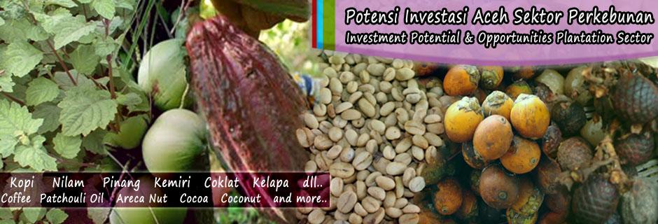 Aceh Investment Summit 2012 Bahas Isu Strategis Investasi