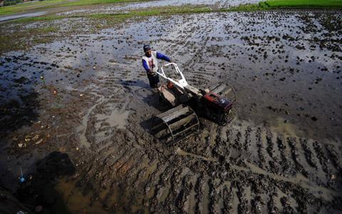 Traktor (metrotvnews.com)