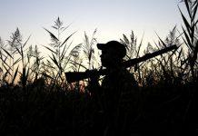 berburu rusa di hutan