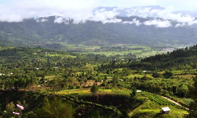 Pemandangan dari atas Kedah (leuserview.blogspot.com)