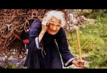 Ilustrasi orang tua lanjut usia, kisah sahabat Rasulullah Ali bin Abi Thalib