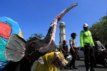 Earth Hour Serukan Penyelamatan Gajah Sumatera