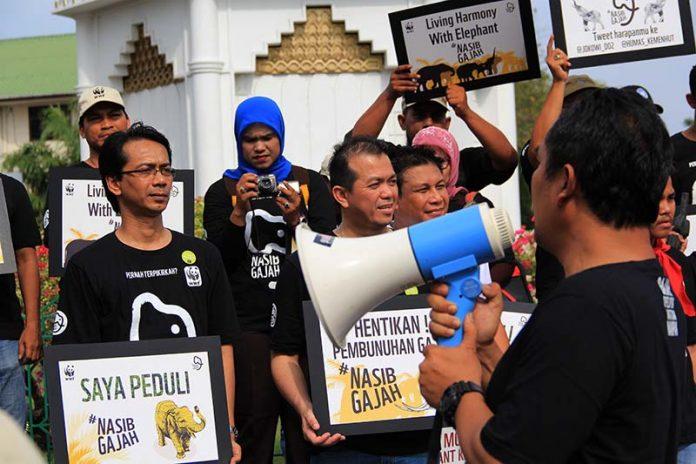 Peserta parade gajah berorasi tentang nasib gajah di bundaran simpang lima Banda Aceh (Foto M Iqbal/SeputarAceh.com)