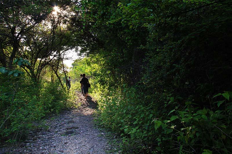 Jalan setapak menuju pantai Ujung Batee Kapai (Foto M Iqbal/SeputarAceh.com)