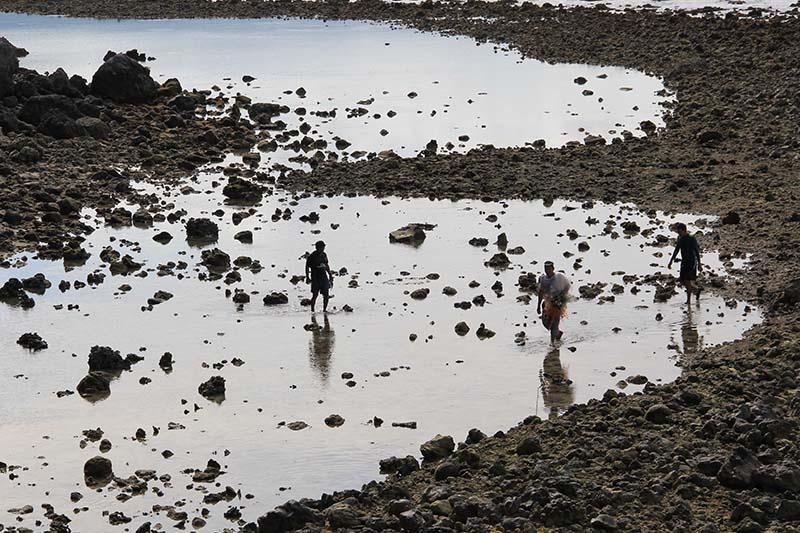 Nelayan mencari ikan diantara hamparan batu karang yang mati di pantai Ujung Batee Kapai Amat Ramanyang (Foto M Iqbal/SeputarAceh.com)