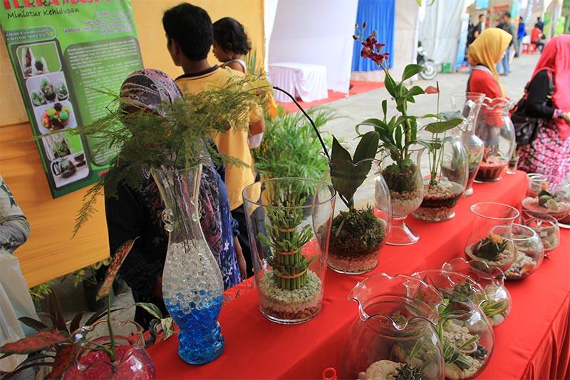Pengunjung melihat koleksi tanaman hias di Festival Kota Hijau (Foto M Iqbal/SeputarAceh.com)