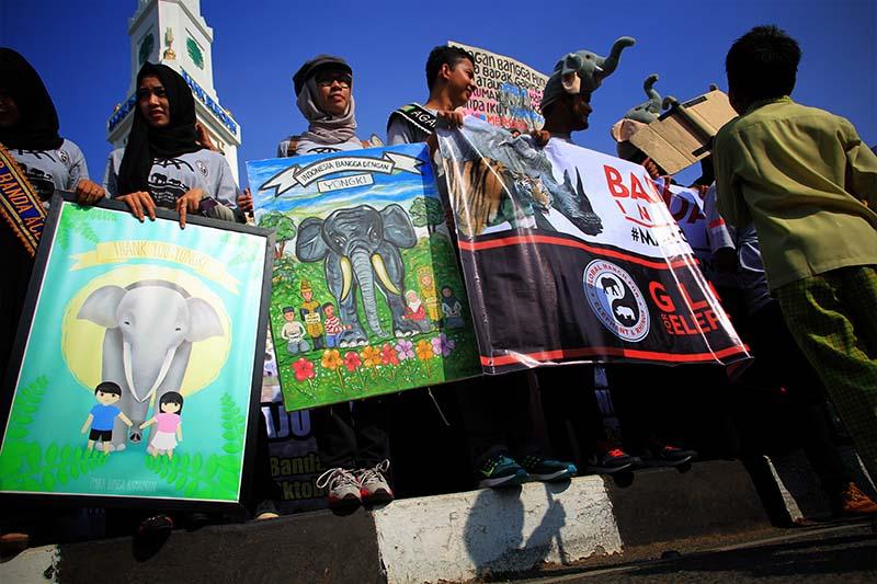 Komunitas pecinta satwa memegang lukisan 'Indonesia Bangga dengan Yongki' dalam aksi Parade Golbal untuk Gajah, Badak dan Harimau di Simpang Lima, Banda Aceh. (Foto M Iqbal/SeputarAceh.com)