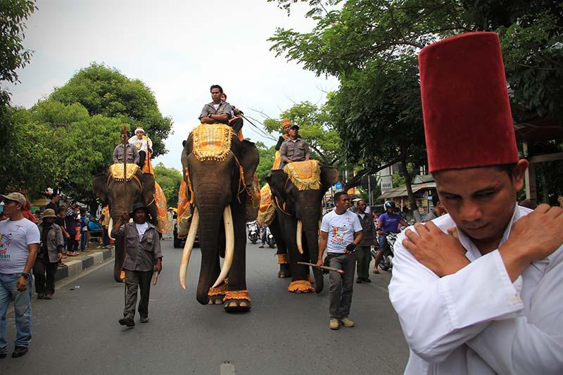 Sultan menunggangi Gajah meriahkan pawai 1 Muharram 1437 H, acara Aceh Hijriah Carnival, Banda Aceh (Foto M Iqbal/SeputarAceh.com)