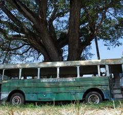 Robur Hino Jepang kendaraan umum tempo dulu Universitas Syiah Kuala di Darussalam, Banda Aceh (Foto M Iqbal/SeputarAceh.com)