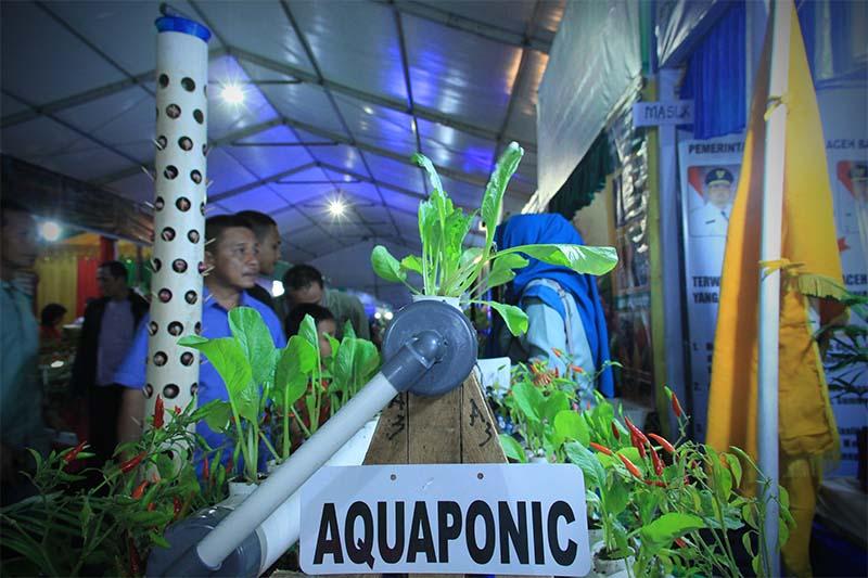 Pengunjung melihat tanaman aquaponic di stand Peda KTNA 2016 di pelataran Stadion Harapan Bangsa Lhong Raya, Banda Aceh (Foto M Iqbal/SeputarAceh.com)