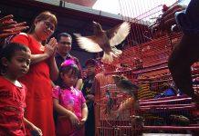 Warga etnis Tionghoa melepas sekitar 100 ekor burung gereja saat perayaan Tahun Baru Imlek 2586 di Vihara Dharma Bakti, Banda Aceh (Foto M Iqbal/SeputarAceh.com)